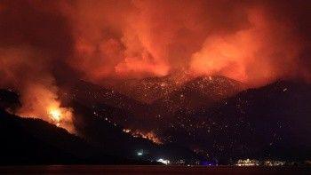 Bilanço çok ağır! Orman yangınları haritalandırıldı