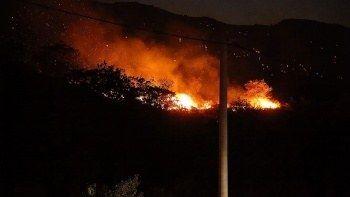 Bodrum'daki makilik ve otluk yangını kontrol altında alındı