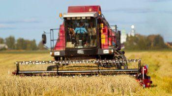 Buğdaya yüzde 25 zam! Kuraklık ithalatı patlatacak