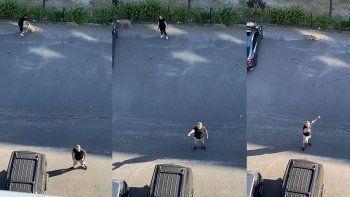 Daire 16'nın 'köpek isyanı' sosyal medyayı salladı