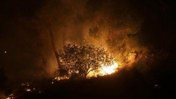 İsrail ormanlık alanda çıkan yangınlar nedeniyle uluslararası yardım istedi