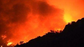 Muğla Bodrum Milas Köyceğiz orman yangınlarında son durum! Muğla orman yangınları kaçıncı gününde?