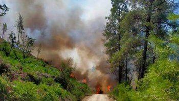 Orman yangınlarında son durum: Bucak yangını tehlikeli