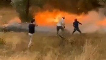 Kozalakların yangını nasıl büyüttüğü kameraya yansıdı