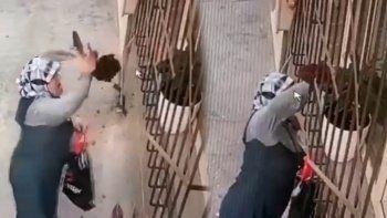 Pes dedirten hırsızlık: Yaşlı kadın saksıdan söktüğü çiçeği çaldı