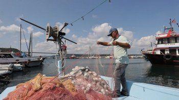 Beklenmeyen felaketin etkisini uzmanı anlattı: Bol ve ucuza balık yiyeceğiz