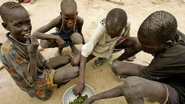 Kuraklık yüzünden Kenya'da çocuklar yaprak yemeye başladı