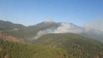 Adana'daki orman yangını kontrol altında