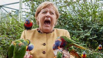 Angela Merkel kuş parkında zor anlar yaşadı