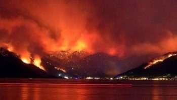 Ateşin büyüklüğüne göre kazanç! Yak ormanı al doları
