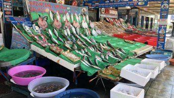 Balık sezonu keyifsiz başladı: Balık tezgahları boş kaldı