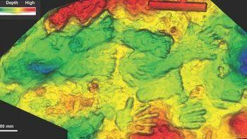 Dünyanın en eski sanat eseri bulundu: 226 bin yıllık el izleri