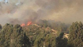 Karşıyaka'da çıkan orman yangını kontrol altında