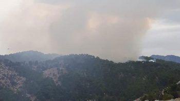 Manavgat'taki orman yangını kontrol altında
