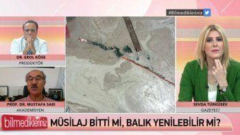 Marmara'da tehlike devam ediyor! Müsilaj dipte bekliyor!