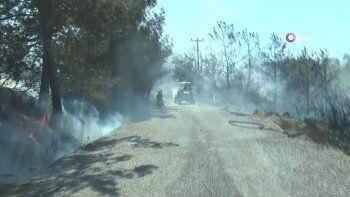 Muğla'da iki noktada orman yangını