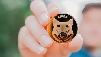 Shiba Inu durdurulamıyor: Değeri yılbaşından beri tam yüzde 8,6 milyon arttı