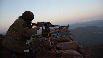 Terör örgütüne bir darbe daha: Bitlis'te 4 terörist öldürüldü