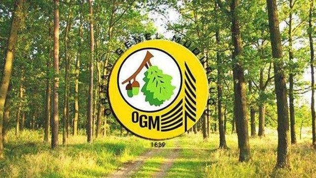 OGM personel alımı ne zaman yapılacak? OGM personel alımı başvuru şartları!
