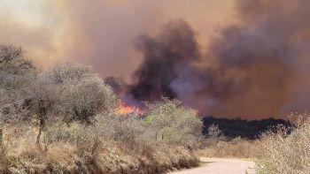 Arjantin'deki orman yangınında 2 kişi öldü