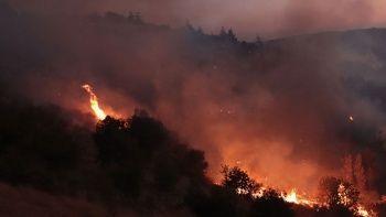 Hatay'daki orman yangını kontrol altında