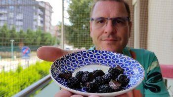 Kilosu 4 bin avroya satılan Türk mantarının borsasını Alman kurdu