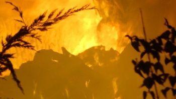 Kırklareli'nde çiftlik yangını geceyi aydınlattı