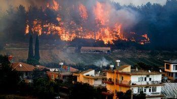 Orman yangınlarına karşı yeni plan: Yeni uçaklar alınacak