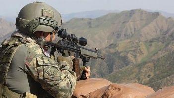 Pençe Kaplan bölgesinde 2 terörist öldürüldü