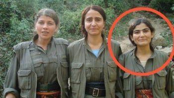 Son dakika! PKK'nın sözde yöneticisi Taybet Bilen etkisiz hale getirildi
