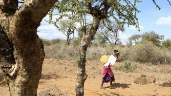 Ulusal felaket ilan edildi! Kenya'da 200 bin kişi günde yalnız bir öğün yiyebiliyor