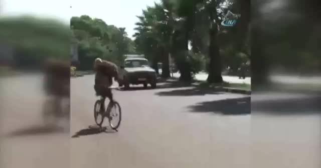 Gören bir daha baktı: Bisikletle 2 kurbanlık taşıdı