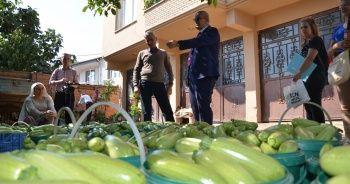 İznik'te üretilen kabaklar yurt dışına ihraç ediliyor