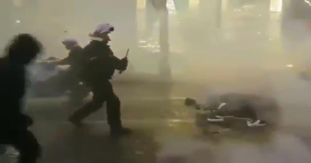 Fransız polisi eylemciye silah çekti