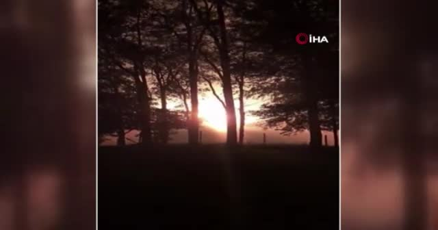 ABD'de doğal gaz boru hattında patlama: 1 ölü