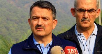 Bakan Pakdemirli'den İzmir'deki orman yangını ile ilgili açıklama!