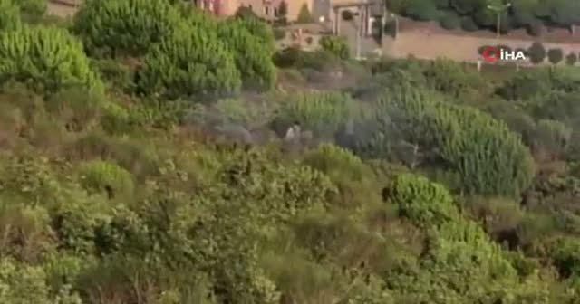 Aydos Ormanı'ndaki yangının çıkış anı kamerada