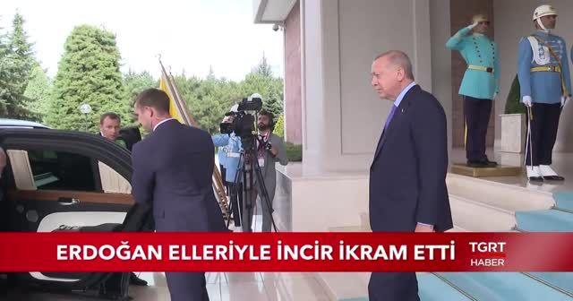 Cumhurbaşkanı Erdoğan, Putin ve Ruhani'ye elleriyle incir ikram etti
