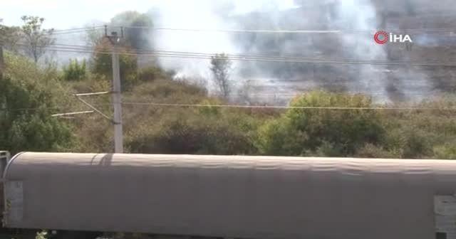 Nükleer Araştırma Merkezi'nde ağaçlık alanda yangın