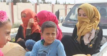 Tel Abyad'da eve dönüş başladı