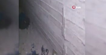 Tel Abyad'ta Terör Örgütü PKK/YPG'ye Ait Tünel Tespit Edildi