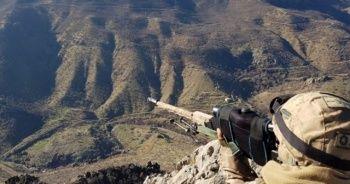 Şırnak'ta 'Kıran-9', Hakkari'de 'Kıran-10' operasyonları başlatıldı