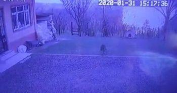 Doğal gaz ana boru hattının patlama anı kamerada
