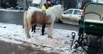 At ile otomobil çarpıştı