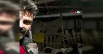 Kuzuların yüksek ses çıkarmasından şüphelendi, video çekerken depremi kaydetti
