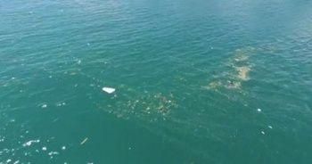 İstanbul Boğazında yüzen çöp yığını böyle görüntülendi