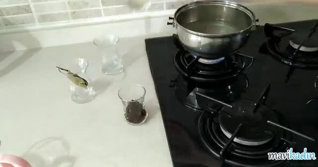 Mutfağa Sinen Balık Kokusu Evden Nasıl Çıkar