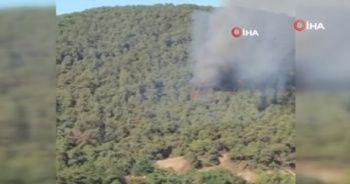 Heybeliada'daki yangına çok sayıda araç ve helikopterle müdahale edildi