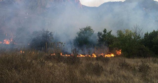 Amasya'da yangın: 5 dönüm alan zarar gördü