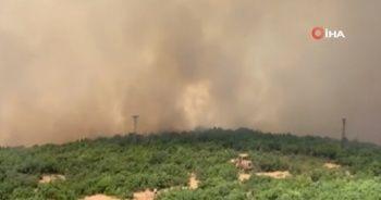 Elazığ'daki orman yangını kontrol altına alındı